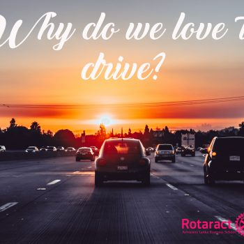 WHy do we love to drive